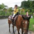 動物の大好きなお子様でしたら、一人でも安心して乗馬ができます。